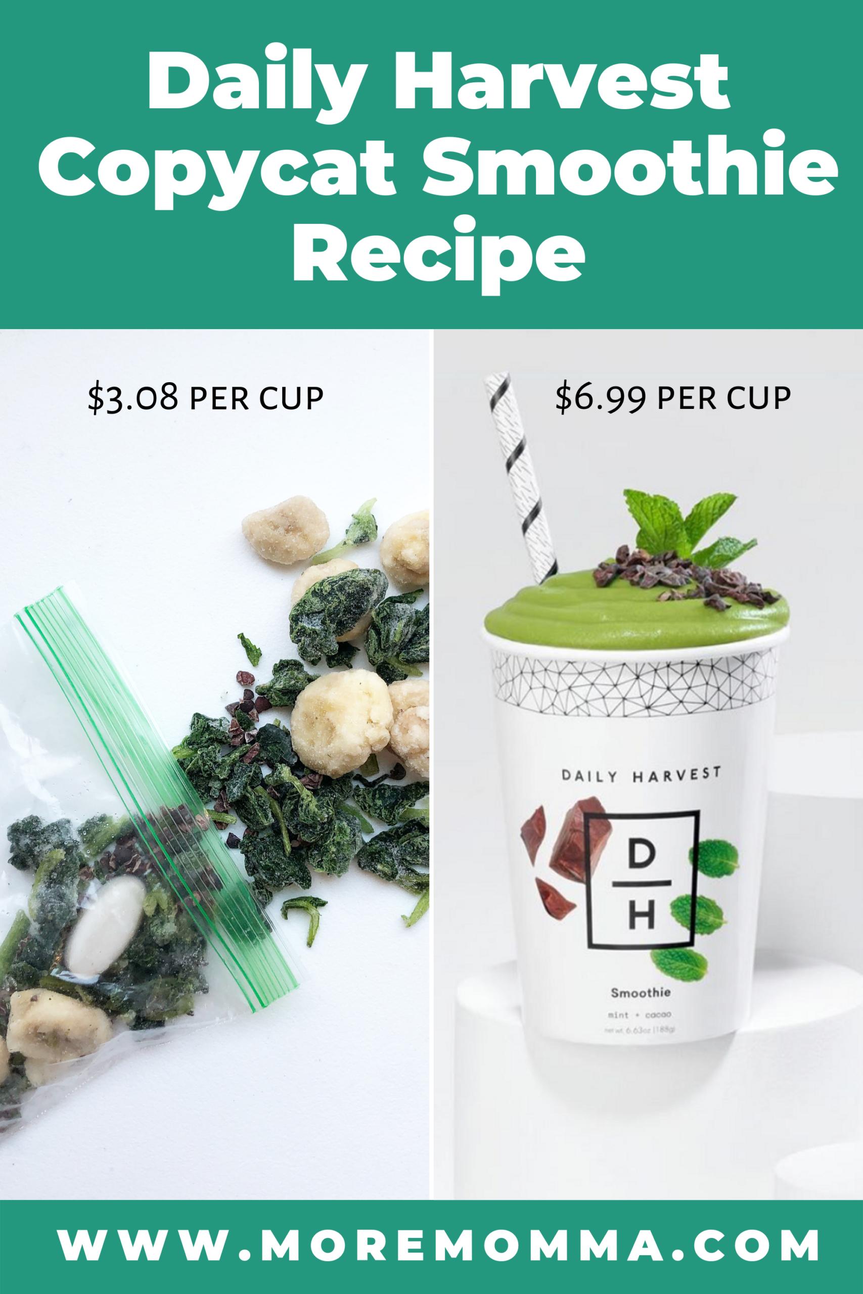 Daily Harvest Copycat Smoothie Recipe