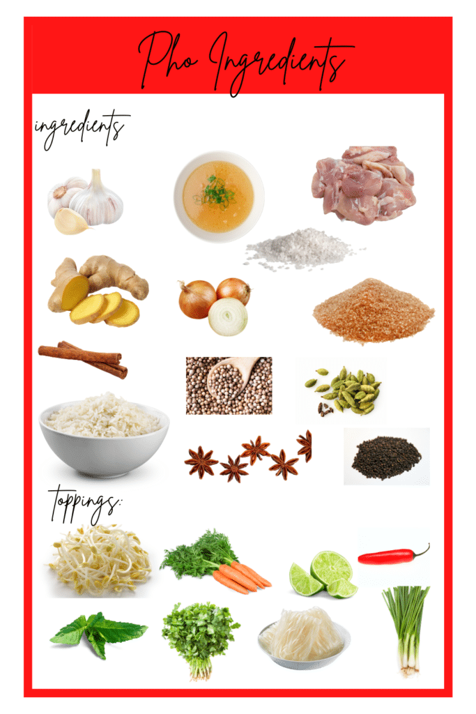 Instant Pot Pho Ingredients